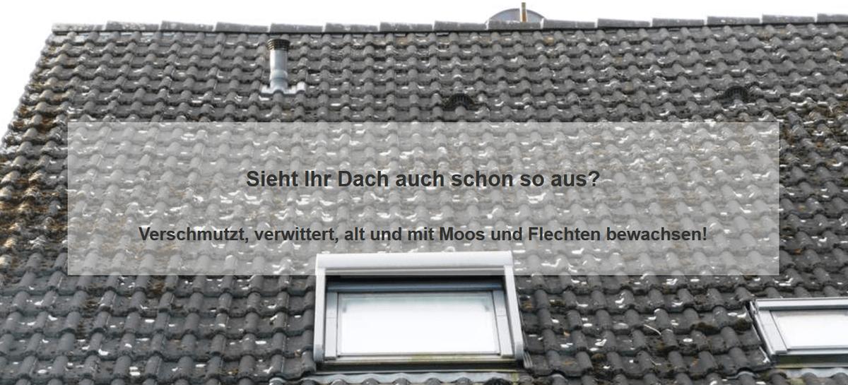 Dachprobleme & Dachverschmutzungen aus 71638 Ludwigsburg: Schäden an der Oberfläche, Ziegel, Dachsteine